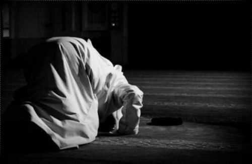 A person makes sujud (prostration) - Offering Two Rak`ahs of Shukr, Ok